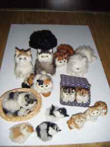 14 Stuffed cats for sale      Truro