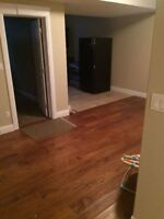 Basement Suite 1 Bedroom in Beaumont Available Right Away