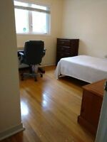 Clean bright room near MUN and Heath Science available now