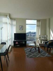 Smaller Room for Rent in Surrey.... Very Close to Surrey Central