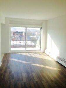 2 1/2 Plateau Apartment $760 *All Included*