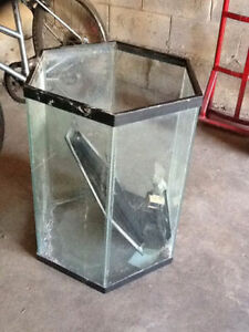 Hexagonal Aquarium (2 ft + height) - big aquarium