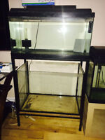 kit de 2 aquariums vente rapide