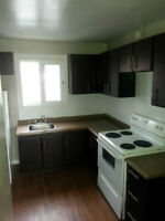 1 & 2 Bdrm available at 428 Lancaster St. W, Kitchener