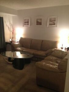 Clean Rooms For Rent  walking distance to Conestoga College