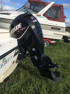 2008 EVINRUDE ETEC 115HP FITTED ON TO 1995 SEA PRO