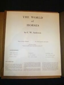 The World Of Horses portfolio set of 8 pictures - C.W. Anderson Cambridge Kitchener Area image 2