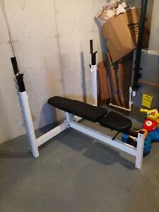 Northern Light Commercial Olympic Bench Press/Squat Rack