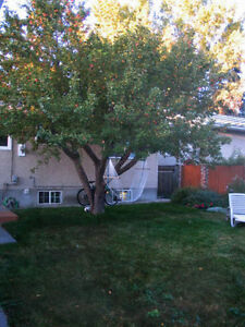 Varsity house, close to UofC, utilities incl, pet friendly