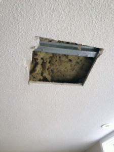 Drywall, taping and popcorn ceiling repair