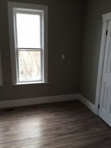 Newly Renovated 2 Bedroom Walking Distance to Google Jan 15th Kitchener / Waterloo Kitchener Area image 10