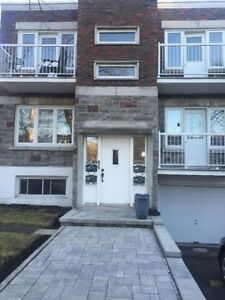 NEW ROSEMONT - 3 1/2 - BRAND NEW KITCHEN TO BE RENOVATED