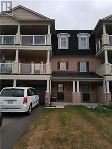 Beautiful 3 bed Lux Townhome - Brock/Taunton, 3 story. 6-10month