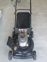 "5.5 ft-lb 22"" Cut Push Lawnmower"