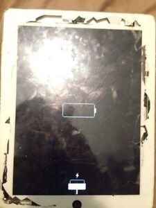 iPad Repairs starting from $80