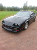 looking for a camaro iroc z