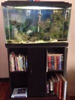 ***30 Gallon Fish Tank and everything you need - Super Cheap!***