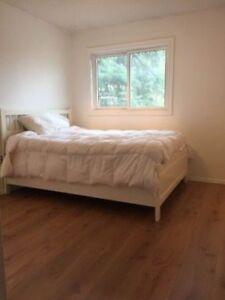 High Quality European Oak Laminate flooring