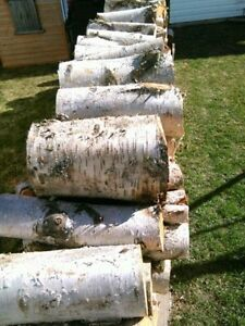 Cheap Birch Firewood