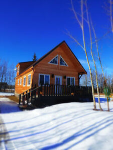 4 SEASONS CABIN LIFESTYLE AT THE LAKE!