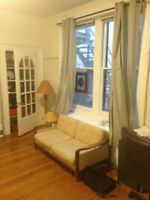 Bright, spacious DOWNTOWN SUBLET - 1 bedroom - May-August