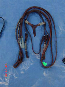 Dale Martin Headstall and Reins