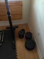 olympic and standard weight plates