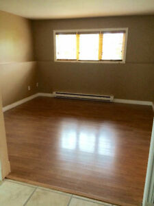 Beautiful Two bedroom Basement Apartment in Goulds.