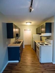 Large 3 bdrm/2 bath condo in Squamish right next to the Chief