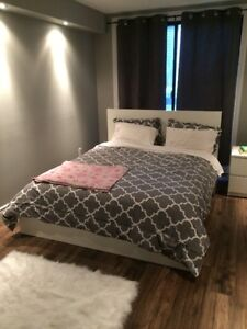 $1325 / 2br - Medical, law and social work students -150 park st