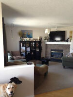 Room for Rent in Shared House, Short Term Ok, Available Now,