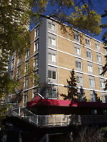 Bachelor Downtown  Bellamy Hill