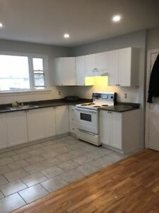 Carling-Kirkwood Renovated 2 bdrm- Dec 1st ($1100)