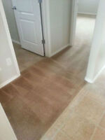 End of Month Carpet Cleaning