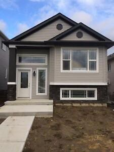 Newer House (Main Floor only) in Tamarack Common
