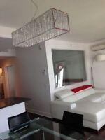 Condo a LOUER- Rouge condominium- parfait pour profesionnel-NCG