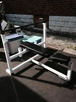 Parabody Olympic Bench Press/Squat Rack, Dips, Weights + Bar