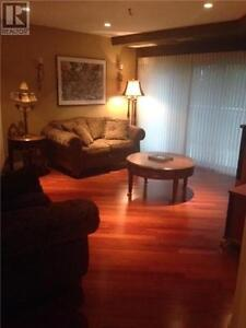 GORGEOUS CONDO WITH UPGRADES AND EXTRAS IN TECUMSEH