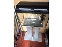 37 Ltr glass fish tank, stand and accessories