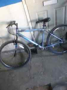 Bycicle blue black