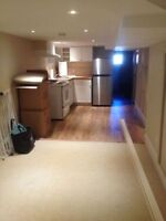 Newly renovated basement unit in trendy Wallace Emerson
