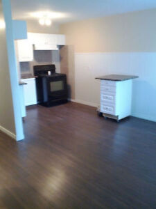 NEWLY RENOVATED - IMMEDIATELY AVAILABLE - GET ONE FREE MONTH!!