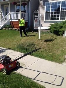 Travis's Snow Removal Fall Leaves Lawn Care Open Year Round Too Oakville / Halton Region Toronto (GTA) image 3