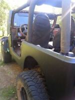 1994 Jeep YJ Project