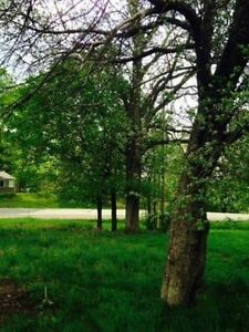 Building Lot. Prime Real Estate Investment/NEW Home
