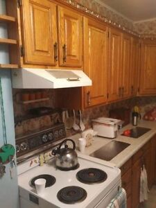 Solid Oak Cabinets - Only $100 each