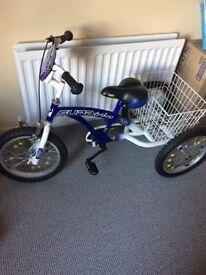 Special Needs Three wheeled trike