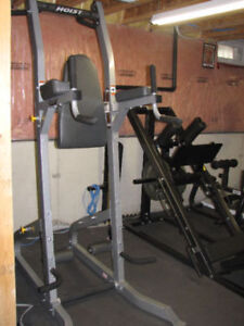 Hoist Pull up tower adjustable folding ab bench and multi bench