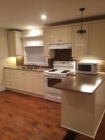 Beautifully Renovated 2 Bedroom House For Rent or Rent To Own
