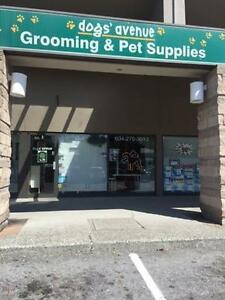 DOG GROOMING BUSINESS PERFECT BUSINESS OPPORTUNITY!